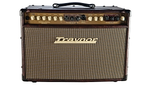 Traynor AM Standard Acoustic Guitar Amp