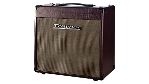Traynor YCV20WR 15 watt TUBE Guitar Combo Amplifier